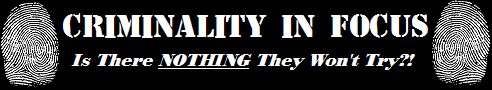 CRIMINALITY-IN-FOCUS_Banner